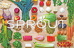 SPROUTTopperLogo.png