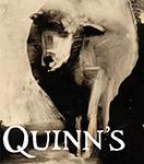 Quinn_logo copy.png