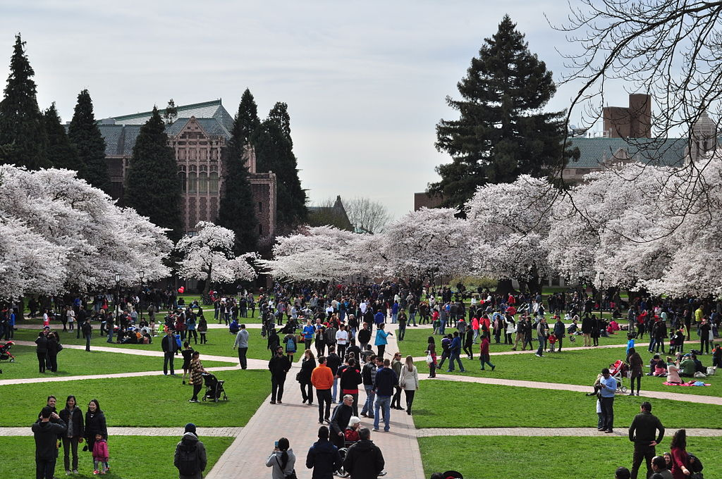 Seattle Is Home To Well Over A Dozen Colleges Universities And Continued Education Programs So Whether You Re Husky Redhawk Or Anything In Between
